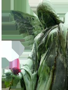 Erfurter Bestattungshaus - Engel